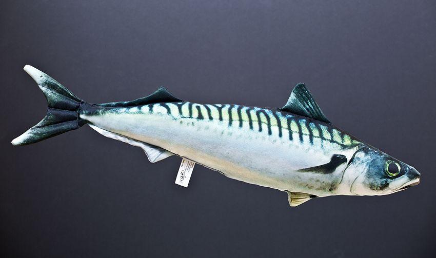 Polštář Makrela 50cm